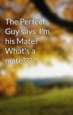 The Perfect Guy says  I'm his Mate? What's a mate????? by Jazzy2kool