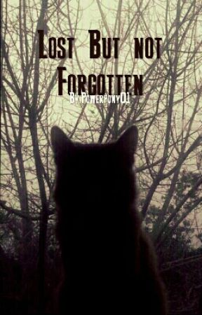 Lost But Not Forgotten (On Hold) by brianna9may