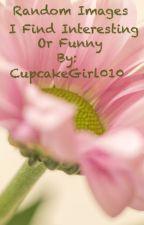 Random Images I Find Interesting, Inspiring, Or Funny. by CupcakeGirl010