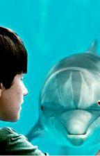 un delfino per amico by micaelaepeppe