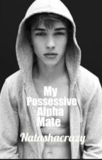 My possessive alpha mate by Natashacrazy