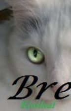 Bre ~The Neko~ by kiwileaf