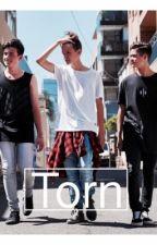 Torn // In Stereo (Jakob Delgado, Ethan Karpathy & Chris Lanzon) by jakobd_ethank