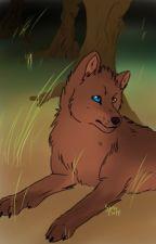 Wolf RP by SayonaCluff