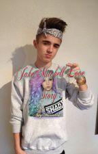 Jake Mitchell Love Story by Amymaria03__thegamer