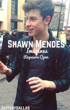 Shawn Mendes Imagines by Justsaydallas