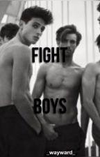 Fight Boys by _wayward_
