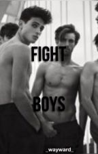 Fight Boys by _wayward_