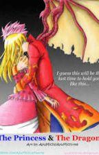 La princesse et le dragon. by shiBi9