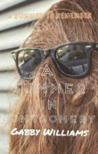 A Summer in Montgomery (slow updates) by dgwgabby