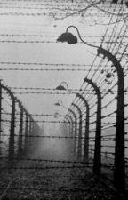 Ich war alleine hinter diesem Zaun by NeyomieXD