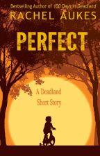 Perfect: A Deadland Short Story by RachelAukes