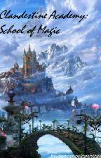 Clandestine Academy: School of Magic by donotnoticethisgirl