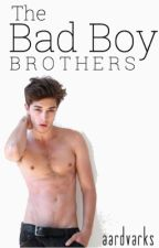 The Bad Boy Brothers by aardvarks_