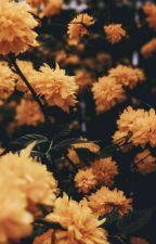 Lal-i Yar / Allah İçin Seven Kalpler by muvahhide__
