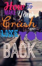 How to Make your Crush like You back by scrambledfandoms