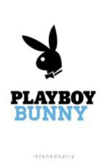 playboy bunny 》narry [translation]