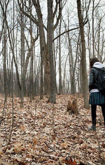 Follow Me Down (Teen Wolf)