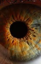 Through my eyes by SatansDoormat