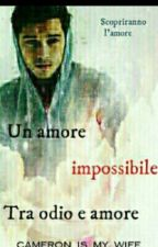 Un amore impossibile tra odio e amore by disaster_forever