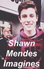 Shawn Mendes imagines by muffintopmendes
