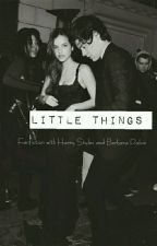 Little Things || H.S  by GirlOfHarry_069