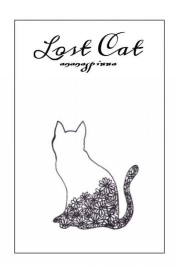 Lost Cat ~ L.S.