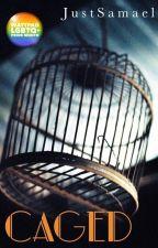 Caged (BoyxBoy)  by JustSamael