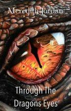 Through the Dragons Eyes by KoalaBear119
