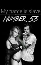 My name is, slave number 53 by Harrystylesstar01
