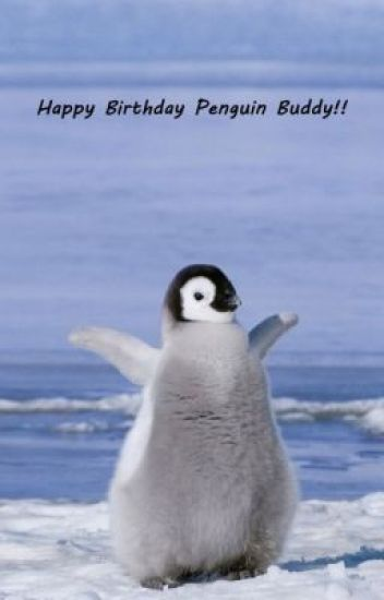 Happy Birthday Penguin Buddy Bleh Wattpad