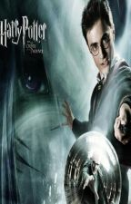 Harry Potter and the fairy princess by kataradragon