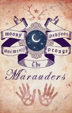 Marauders Headcanons Stuff 'n' Things by LycanthropicMess