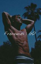 Frenemies (Grayson Dolan fanfic) by dreamyxdolans