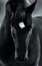 The lonely Soul of a horse shifter by Windy_lonely_souls