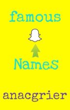 Famous snapchat names 2015 by anacgrier