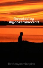 Adopted by skydoesminecraft by Bethanyonmineplex