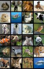 curiosidades sobre los animales by wna_caga