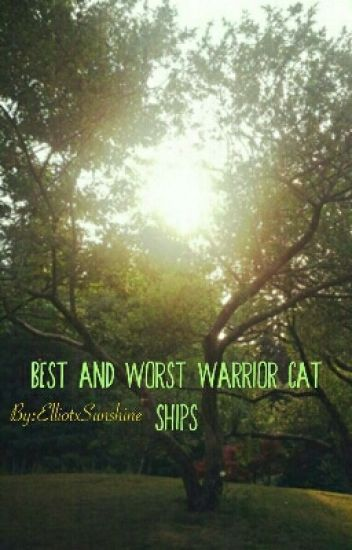best and worst warrior cat ships -  ud83c udf3cdawnie ud83c udf3c