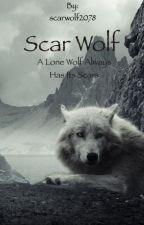 Scar wolf... by scarwolf2078