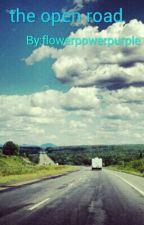 Open Road by flowerpowerpurple