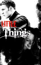 -LITTLE THINGS-(Capitán América y _____)- by neganslilbaby