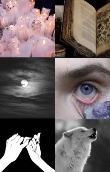 The Witchwolf