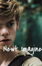 Newt Imagine by imaginetheglade