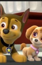 Paw Patrol: Chase and Skye, their story. by pawpatrol02
