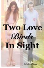 Two Love Birds In Sight {A Harry Styles Fan Fiction}~EDITING~ by StylesLittleThings