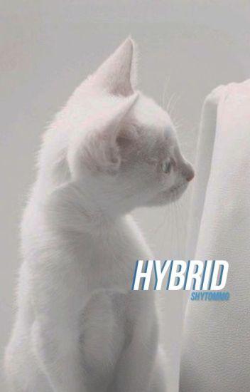 Hybrid » Louis!kitten