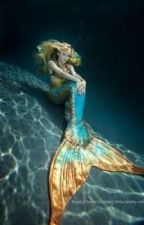 Mermaid Bay by maustinllca