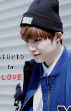 STUPID in Love ( SUGA BTS)(~IDOL ver . ~) by AnyYoonMin