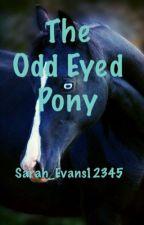 The Odd Eyed Pony by Sarah_Evans12345